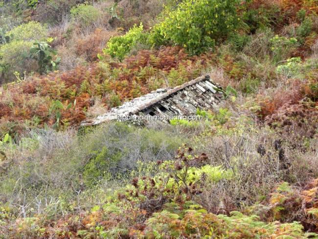 Land in Lomo Oscuro on La Palma island