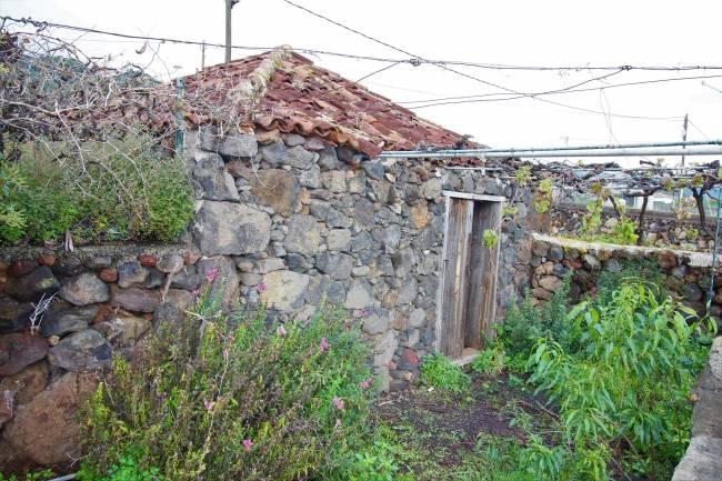 Bodega with vineyard