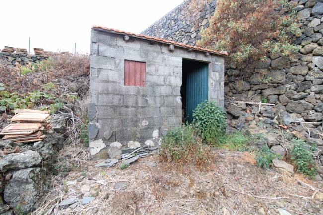 Agricultural property in Finca Amado 2