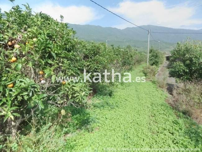 Building land on La Palma island for sale